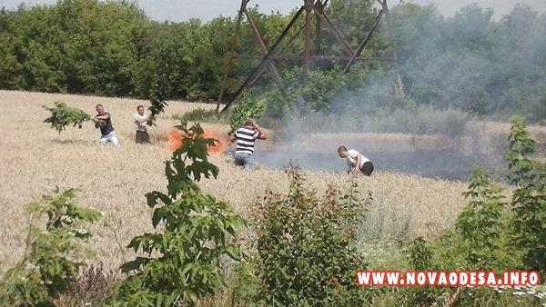 В Николаевской области подожгли поля оппозиционера Корнацкого (Фото, видео)