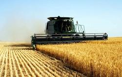 Вниманию руководителей фермерских хозяйств Новоодесского района!