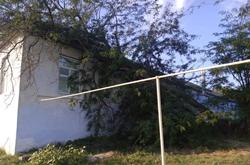 В Новой Одессе на крышу центра социального обслуживания упало два дерева (Фото)