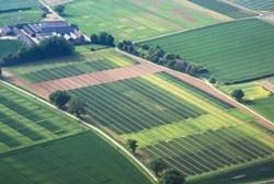 Прокуратура требует от нечестного фермера вернуть земли в Новоодесском районе в государственную собственность