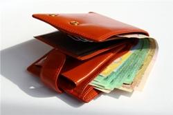 ВНИМАНИЕ! Какая будет минимальная зарплата в 2013 году